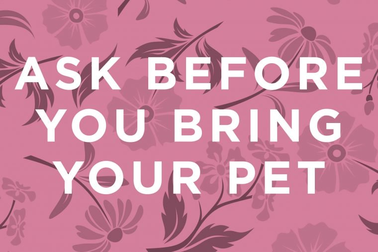 Here's a basic rule for pet owners: